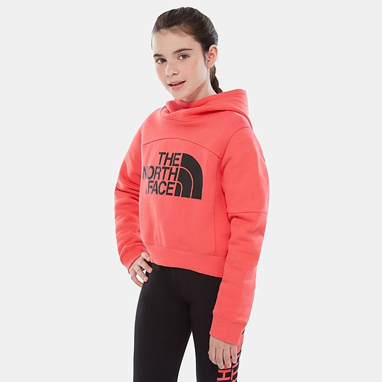 The North Face Cropped Hoodie Girl - Foto de detalle