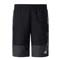 The North Face Class V Water Short Boy -  TNF Black Bugging