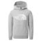 The North Face Drew Peak Light Hoodie Youth - TNF Light Grey